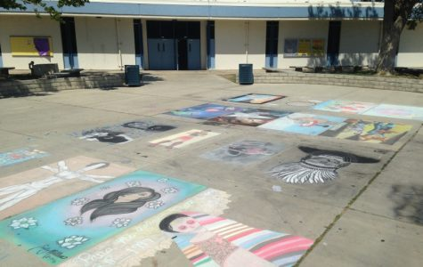 Rachel Phelps: A Chalk Art Phenomenon
