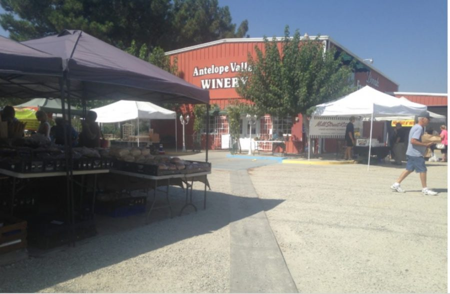 The Farmers Market Bringing The Community Together
