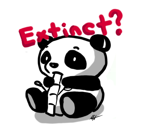 Is+Panda+Conservation+Worth+It%3F