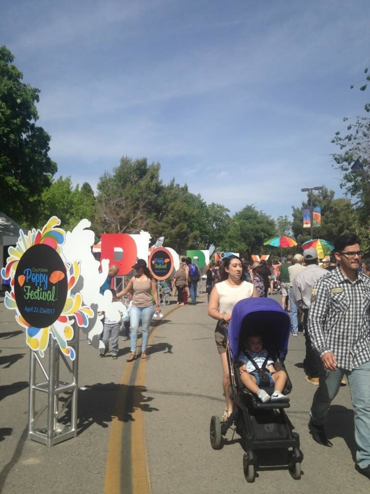 What's Popping at the Poppy Festival?