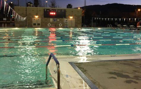 The Start of the Swim Season