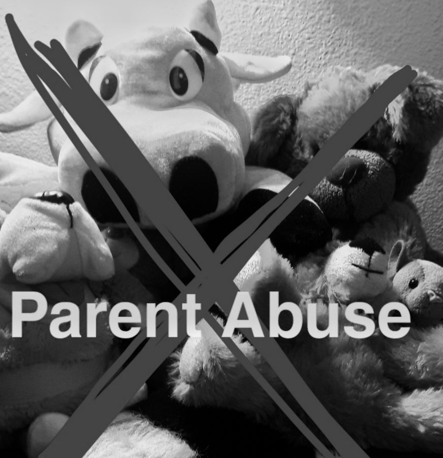 Parent Abuse