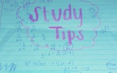 Types of Study Techniques (#5 will shock you!)