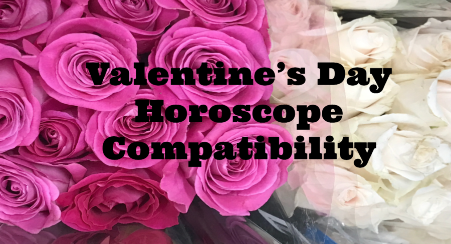 Valentine's Day Horoscope Compatibility