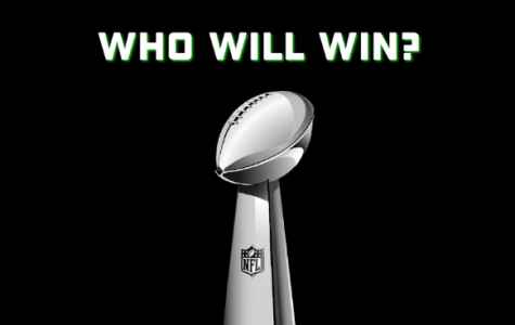 Who are this year's Superbowl contenders?
